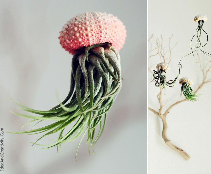 15 گلدان زیبا و خلاقانه