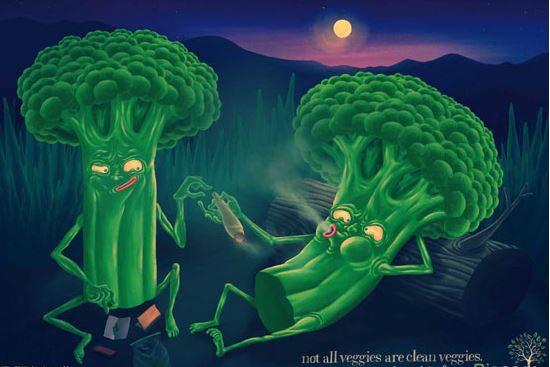 همه سبزیجات تمیز نیستند…