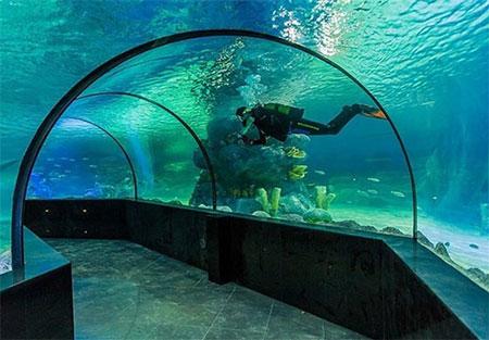 تونل آکواریوم اصفهان, 33 آکواریوم پنج تا 10 متری را در خود جای داده است