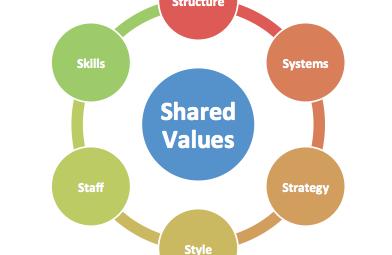 استراتژی ظهور کسب و کاری جدید با استفاده از مدل ۷ اس(2)