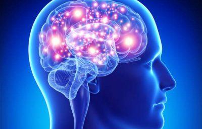۱۲ پیشنهاد طلایی برای عملکرد بهتر مغز