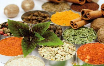 اولین ایده شوی تخصصی در زمینه گیاهان دارویی