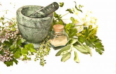 گیاهان دارویی دارای رتبه نخست سودآوری در مبادلات تجاری