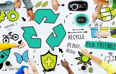۱7 ایده کسب و کار سبز که با راه اندازی آن ها زمین را نجات می دهید