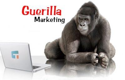 مشخصه های اصلی بازاریابی پارتیزانی