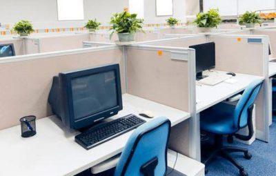 افزایش بازدهی کارمندان با گیاهان