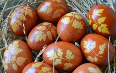 رنگ کردن تخممرغ هفتسین