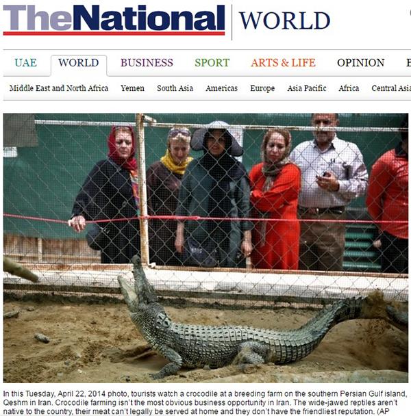 (گزارش نشریه نشنال امارات متحده عربی از نخستین مزرعه کروکودیل خاورمیانه)