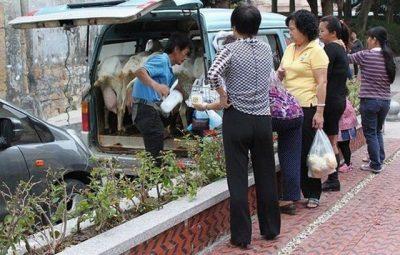 روش جالب و خلاقانه ای برای فروش شیر تازه در چین