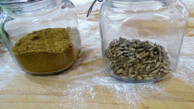 هر نان با آرد ۷۰ جیرجیرک وارداتی از هلند به اضافه آرد گندم و غلات دیگر پخته شده است.