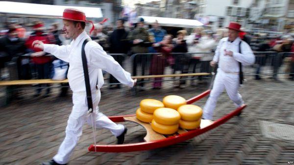 برای پیشگیری از بیماری قلبی و سکته، هر روز پنیر بخورید